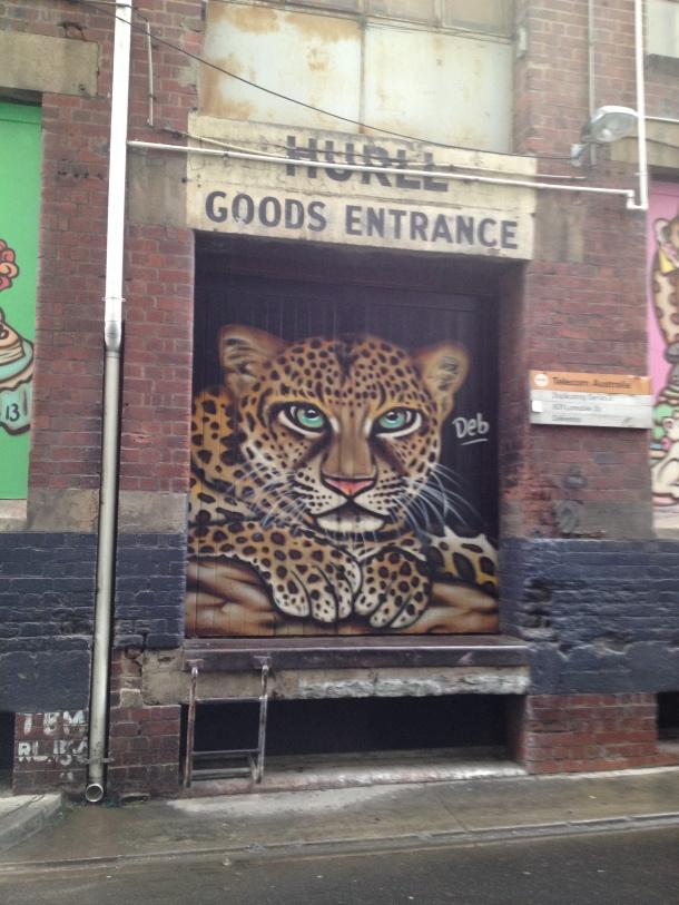 ksoanes_urban-leopard