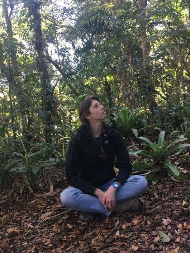Pondering under bromeliads_2016-07-18 19.21.05